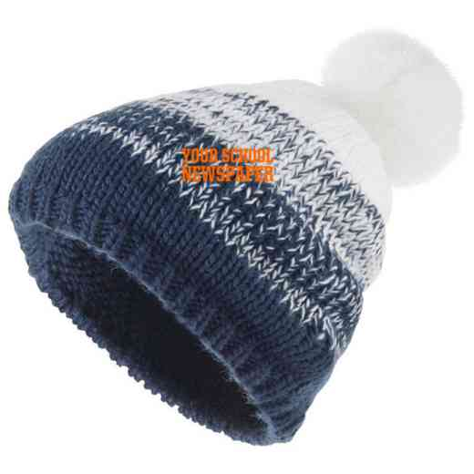 Newspaper Embroidered Holloway Ascent Beanie