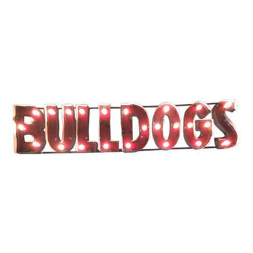 BLDGSWDLGT: LRT MS St Bulldogs Metal Décor Lighted