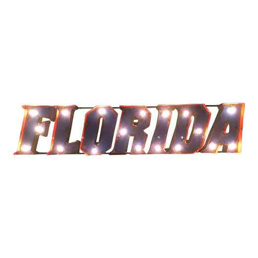 FLWDLGT: LRT Florida Metal Décor Lighted