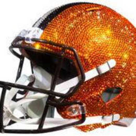 30793: Cleveland Browns Mini Helmet