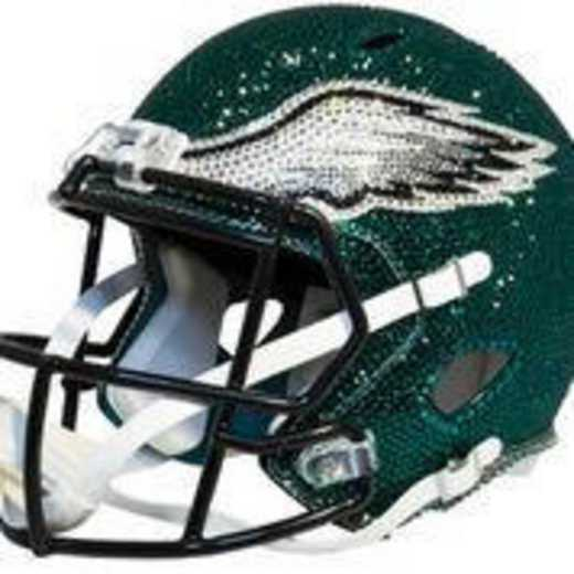 32293: Philadelphia Eagles Mini Helmet