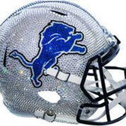 30993: Detroit Lions Mini Helmet