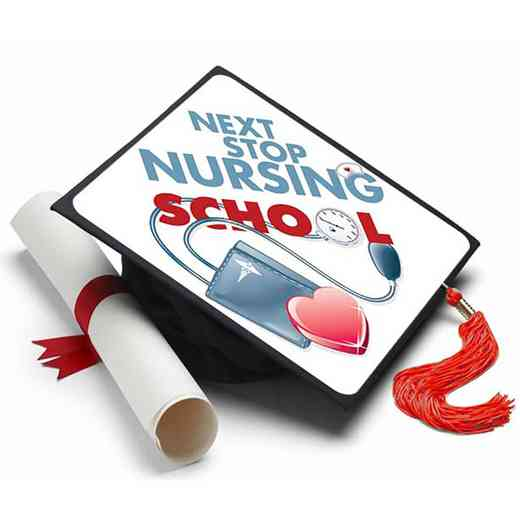 NURSINGSCHOOL: Next Stop Nursing School Grad Cap Tassel Topper