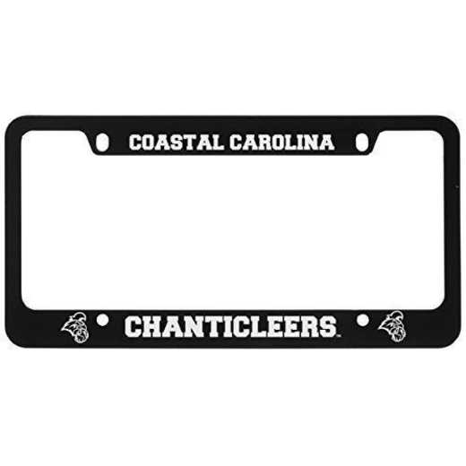 SM-31-BLK-COSTCAR-1-LRG: LXG SM/31 CAR FRAME BLACK, Coastal Carolina