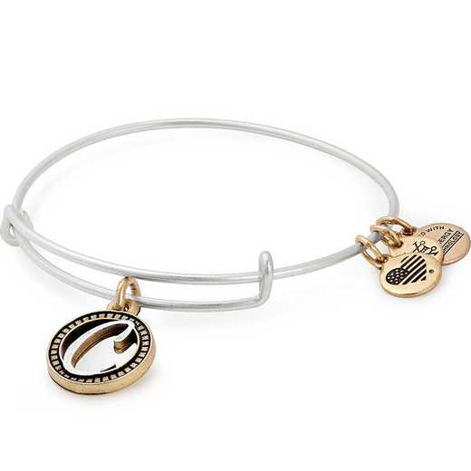 A18EBINT03TTRS: Initial C Two Tone Charm Bangle
