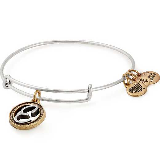 A18EBINT05TTRS: Initial E Two Tone Charm Bangle