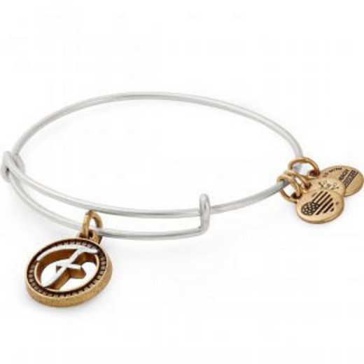 A18EBINT06TTRS: Initial F Two Tone Charm Bangle
