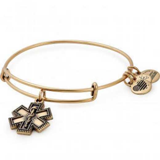 A18EBMPRG: Medical Professional Charm Bangle