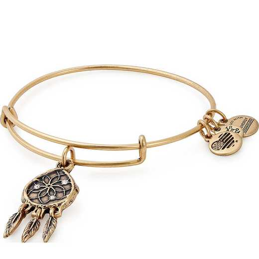 A18EBDC01RG: Dreamcatcher Charm Bangle