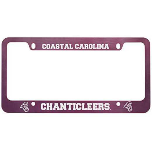 SM-31-PNK-COSTCAR-1-LRG: LXG SM/31 CAR FRAME PINK, Coastal Carolina