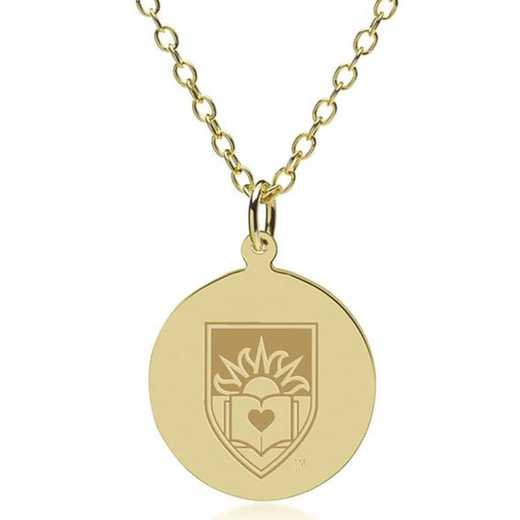 615789785743: Lehigh 14K Gold Pendant & Chain by M.LaHart & Co.