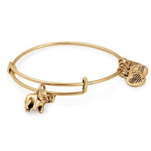 CBD17EFRG: Elephant Charm Bangle - Rafaelian Gold Finish