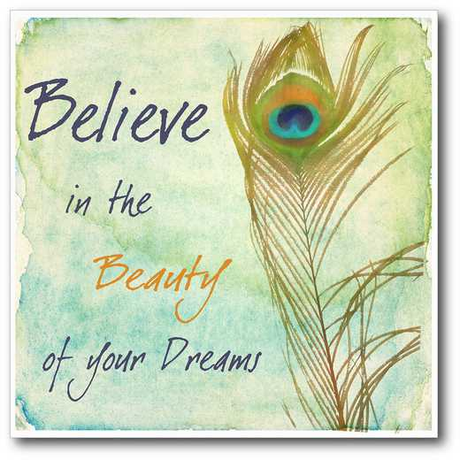 WEB-IF111-16x16: CM Believe in your dreams Canvas  - 16x16