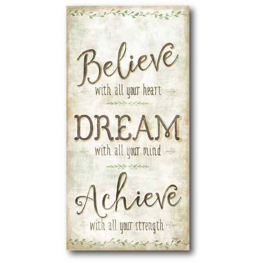 WEB-IF143-12x24: CM Believe & dream  Canvas  - 12x24