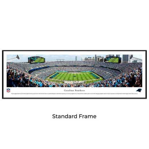 NFLPAN5F: Carolina Panthers Football #5 - Standard
