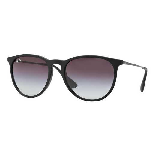 0RB41716228G54: Erika Sunglasses - Black