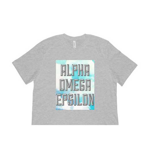 Alpha Omega Epsilon Watercolor Sky T-Shirt-Gray