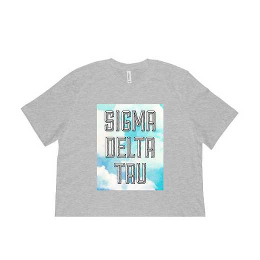 Sigma Delta Tau Watercolor Sky T-Shirt Gray
